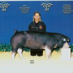 2005 Show Pig Winners