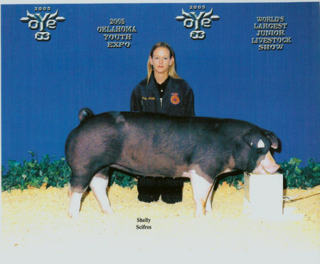 2005 Oklahoma City1st Place Class 1 Junior Gilt