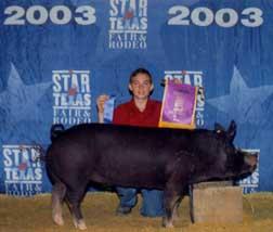2003 AustinChampion Black OPB