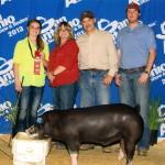 2013 Show Pig Winners