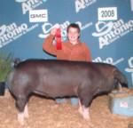 2008 Show Pig Winners