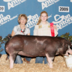 2009 Show Pig Winners