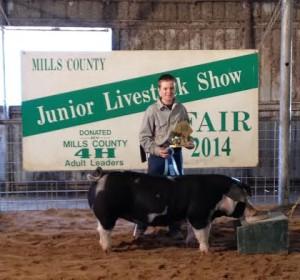 Wyatt Porter's Champion Spot Breeding Gilt at the Mills county stock show Champion OPB