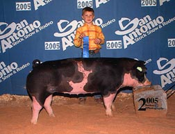 2005 San Antonio1st Place Spot Gilt