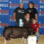 2011 Show Pig Winners